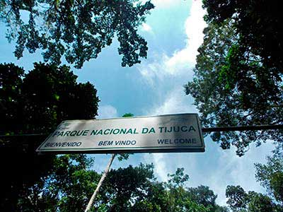 Jeep Tour Tijuca Forest 08