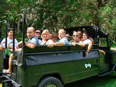 Jeep Tour Tijuca Forest 07