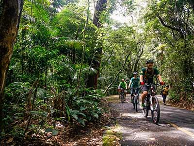 Mountain Bike Parque Nacional da Tijuca (5)