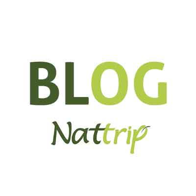 Agência de Turismo e Operadora de Turismo - Blog Nattrip