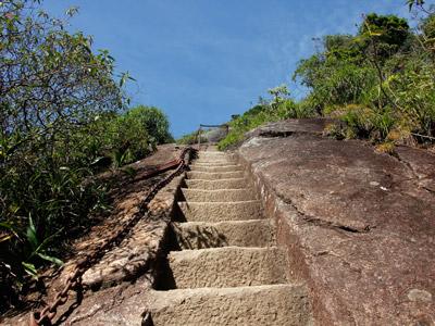 Sendero Pico de Tijuca 2