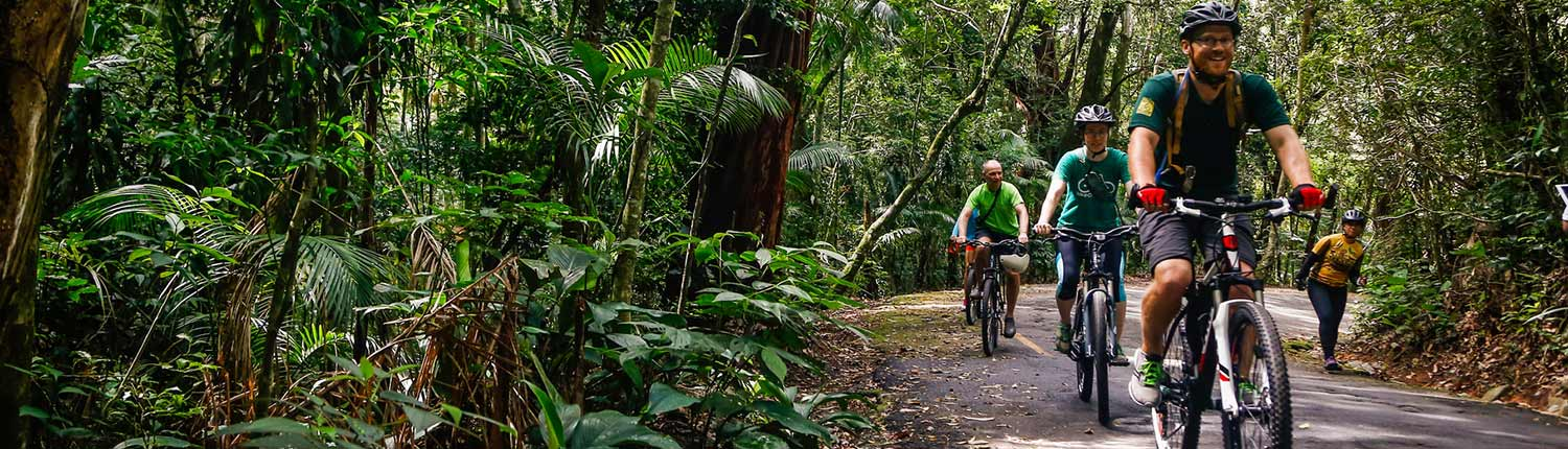 Mountain Bike Floresta da Tijuca (6)