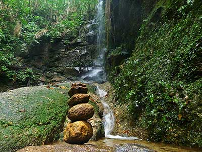 Trilha Floresta da Tijuca