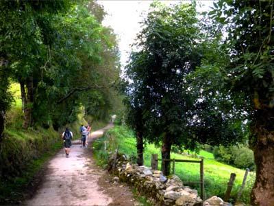 Sarria - Santiago de Compostela 2