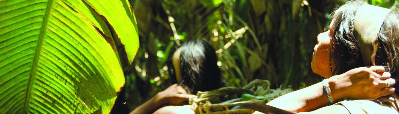 Amazon Rainforest - Travel in Brazil wide-4