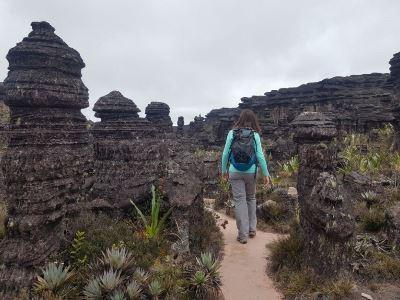 Mount Roraima Trekking Expedition Nattrip 9