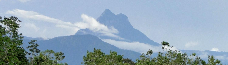 Pico da Neblina trekking