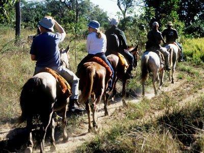 Package Pantanal, Rio de Janeiro and Foz do Iguaçu